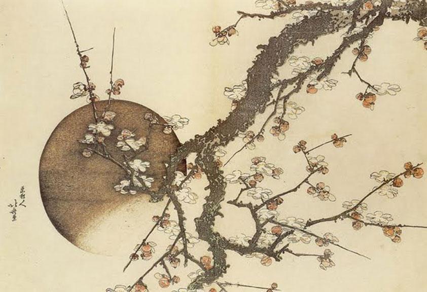 http://www.johnwardknox.com/files/gimgs/32_hokusai-plum.jpg
